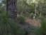 Margaretriver-pressrelease-byMattHull-11